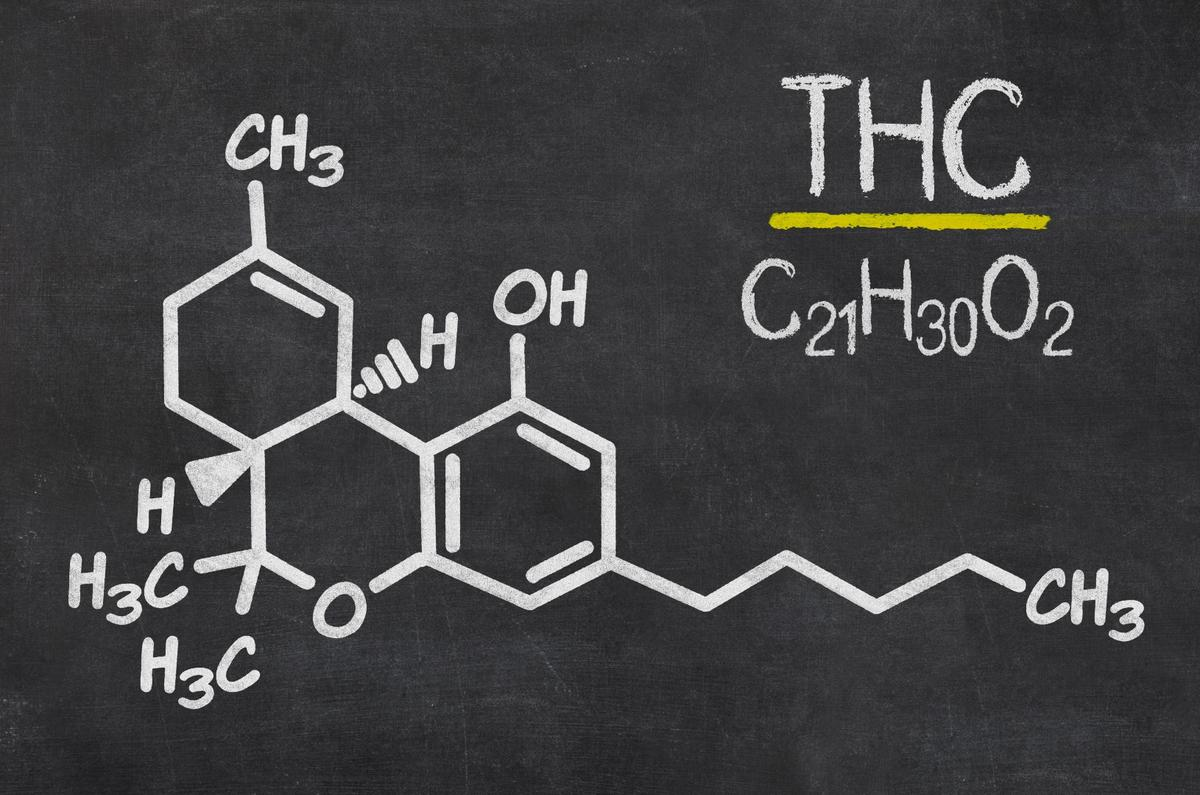 Buy isolating a specific pathway of certain serotonin receptors, researchers believe they can maintain the pain relief and tumor-inhibiting qualities of THC, whilst ridding the user of any cognitive impairment (Credit: Shutterstock)