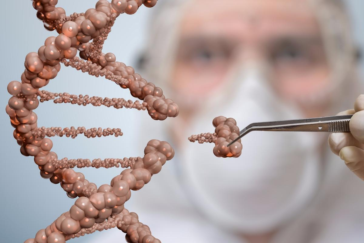 Skin transplants could prove to be an effective delivery system for CRISPR-based gene therapy