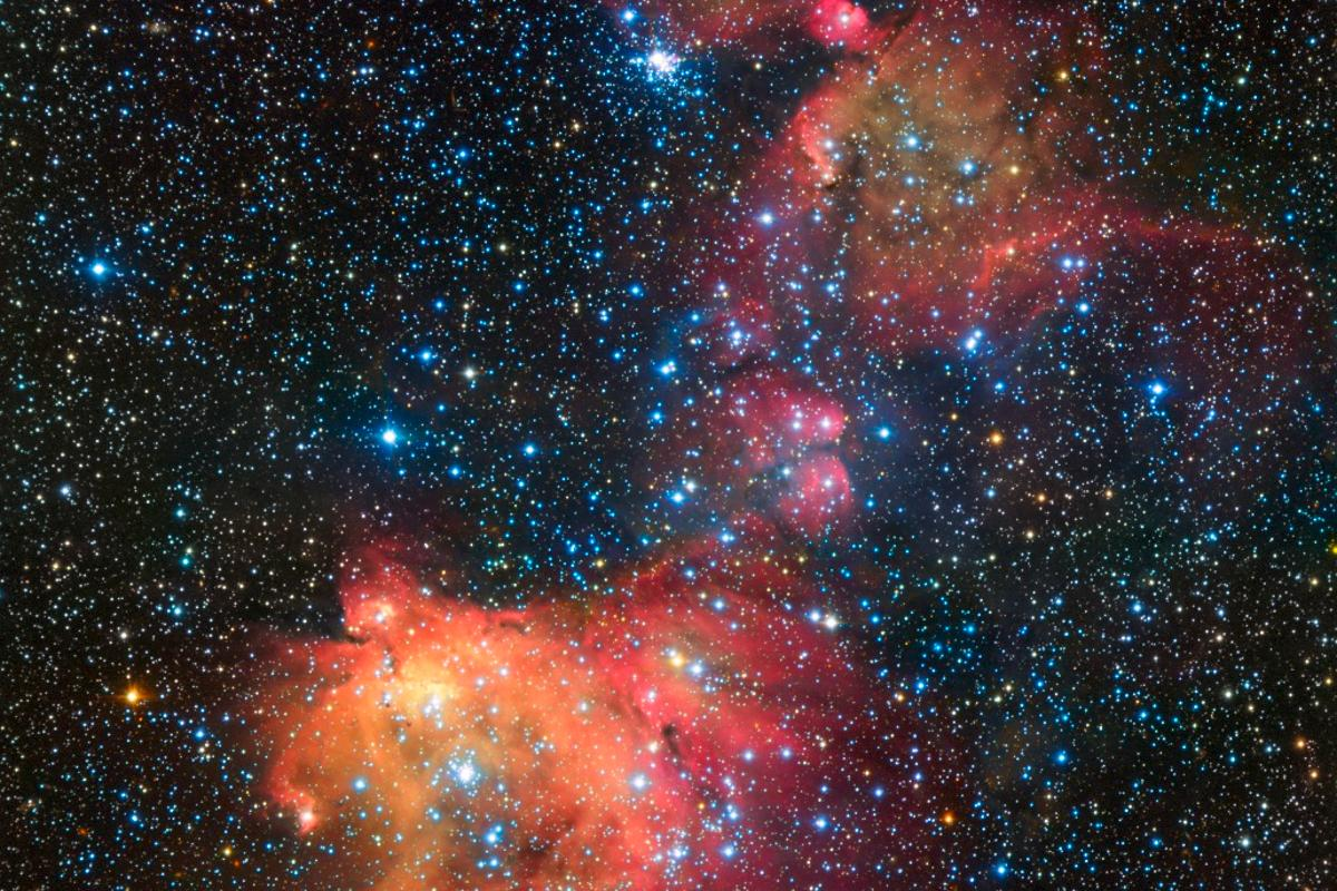 Image of emission nebula N55 as captured by the ESO's VLT