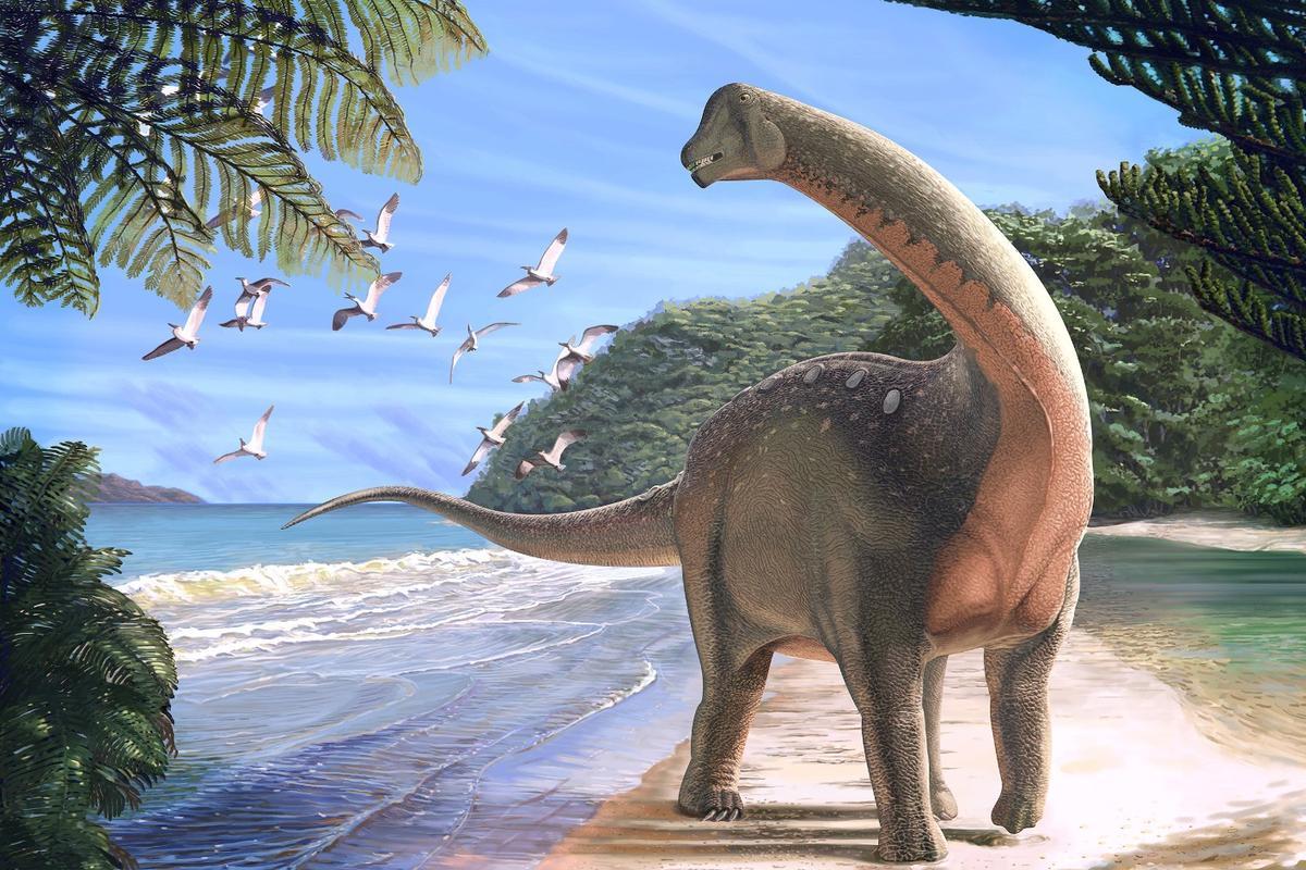 Mansourasaurus shahinae was a school-bus-sized sauropod that plodded around Africa about 80 million years ago