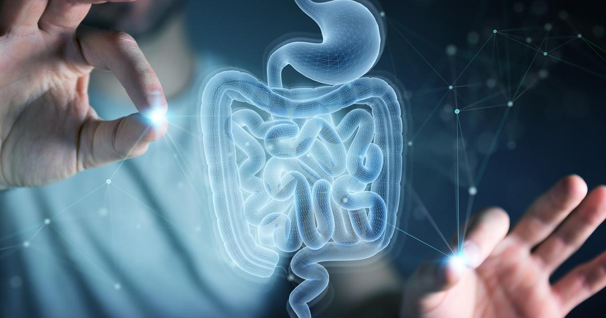 COVID-19 severity linked to gut bacteria in first-of-its-kind study