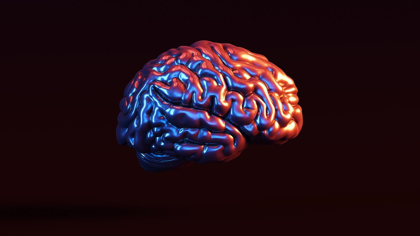 Scientists have developed a new machine learning algorithm that analyzes gray matter density in the brain as a potential biomarker for Alzheimer's