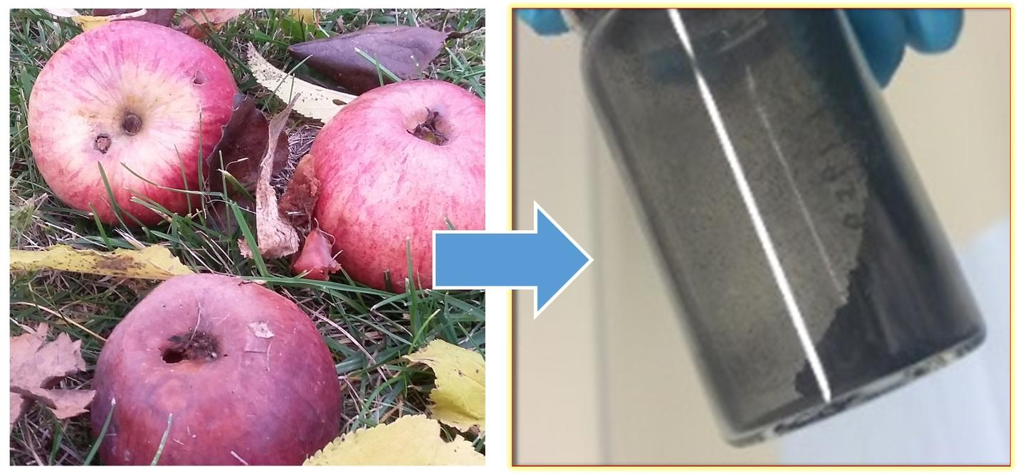A new carbon-based material for sodium-ion batteries can be extracted from apples