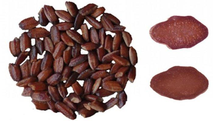 Chinese scientists have genetically engineered purple rice, which is rich in antioxidants