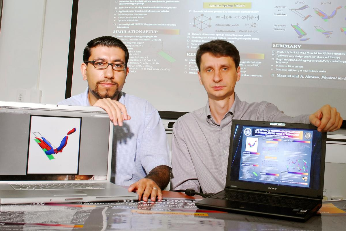 Alexander Alexeev and Hassan Masoud, with their computer model of flapping-wing flight (Photo: Gary Meek)