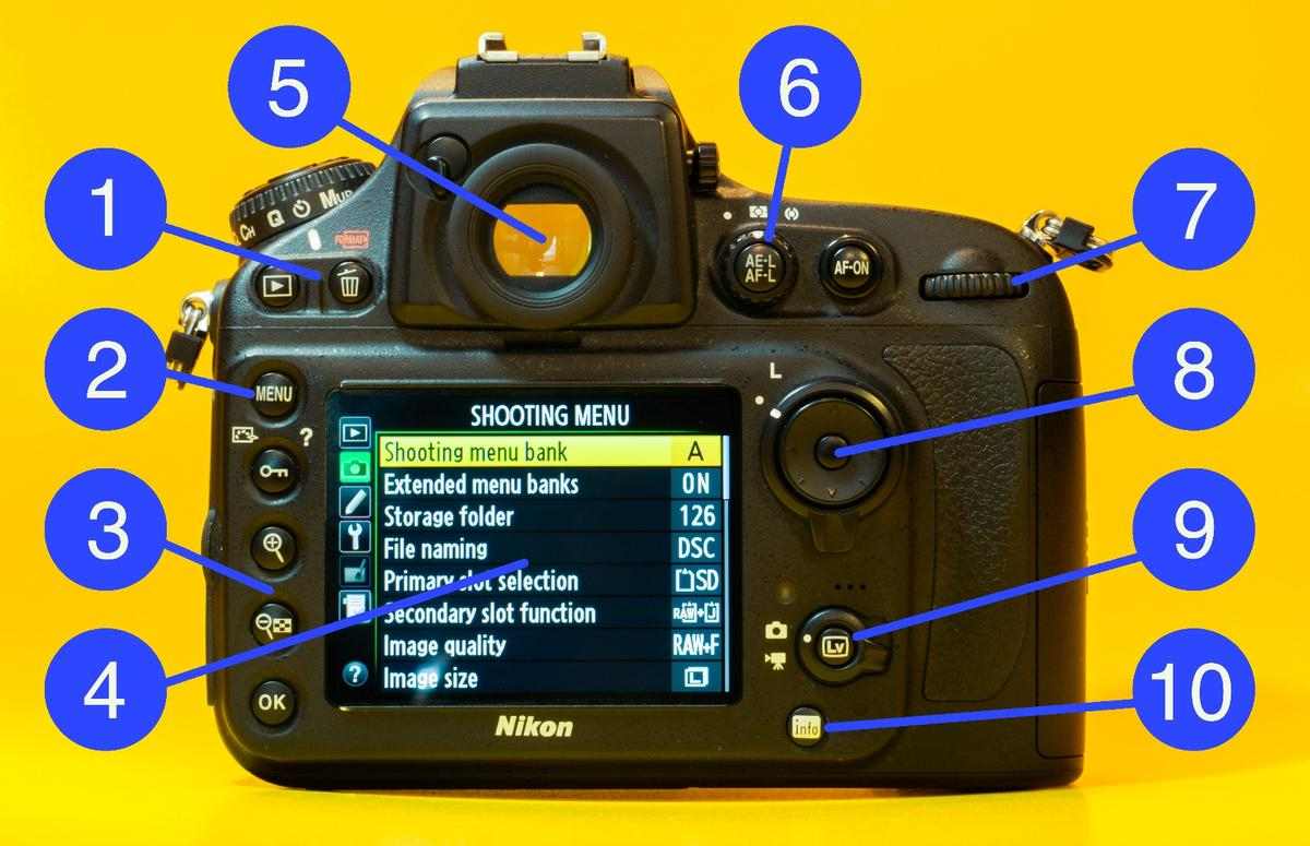 What does what on the back of a DSLR camera