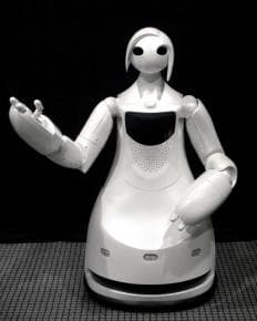 Toyota Tour Guide Robot