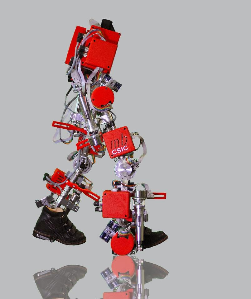 The 12-kg (26-lb) aluminum/titanium exoskeleton is intended for use by children aged 3 to 14, who are suffering from spinal muscular atrophy