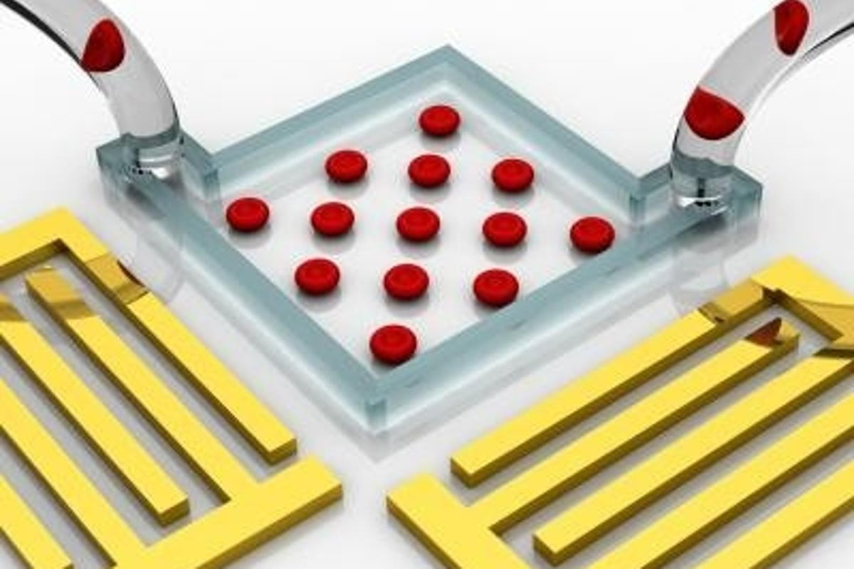'Acoustic tweezers' enable flexible on-chip manipulation and patterning of cells using standing surface acoustic waves (Image: Tony Jun Huang, Jinjie Shi, Penn State)