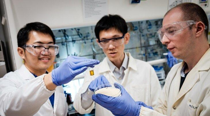 Scientists at Singapore's Nanyang Technological University have developed a new technique to turn plastic waste into formic acid