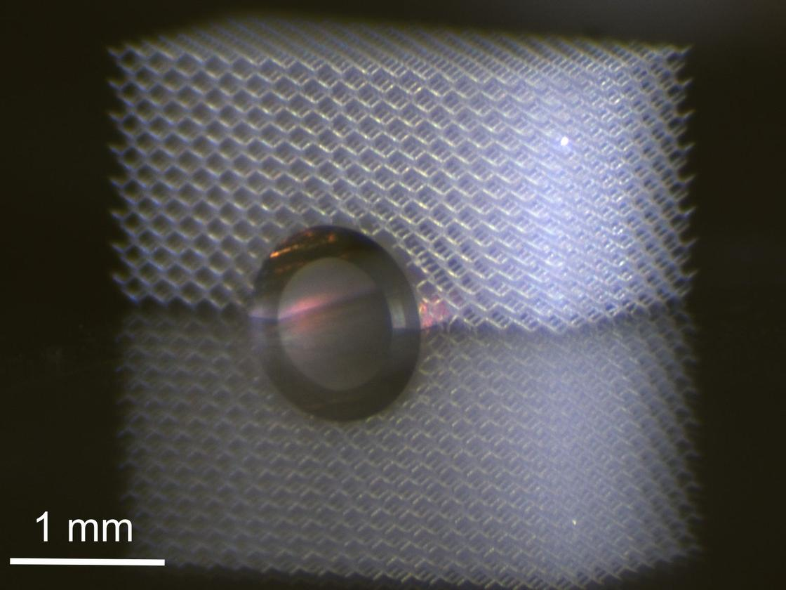 "Metamaterials ""hide"" the metal cylinder from touch (Photo: T Bückmann / KIT)"