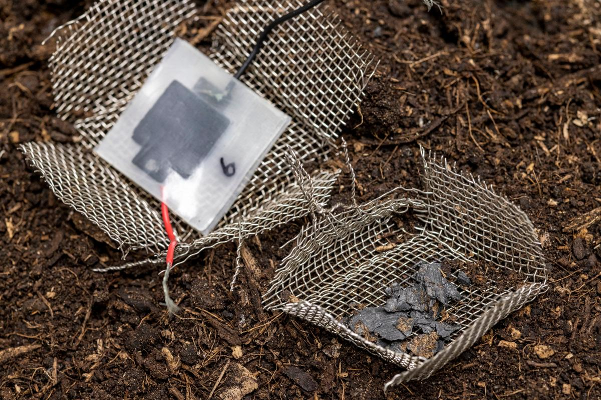 The mini-capacitor in its functional form (left) and after being buried in the soil for two months – the wire mesh is not part of the device