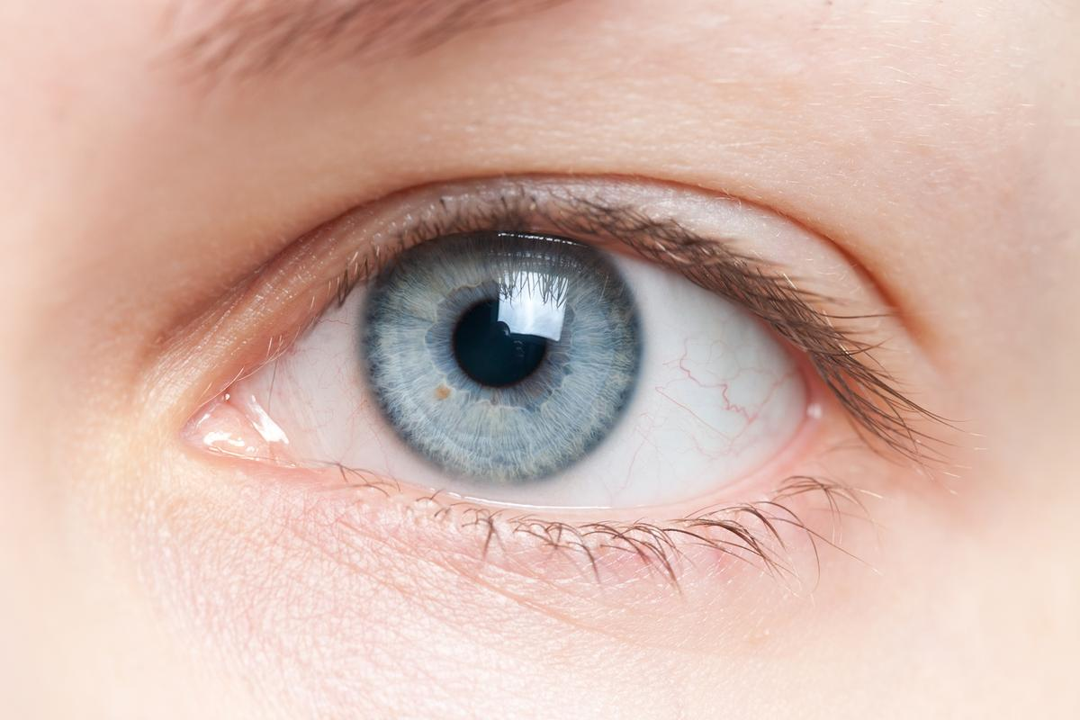 "By tracking and compensating for test subjects' ""fixational eye movements,"" scientists have shown that such movements may help maintain 20/20 vision"