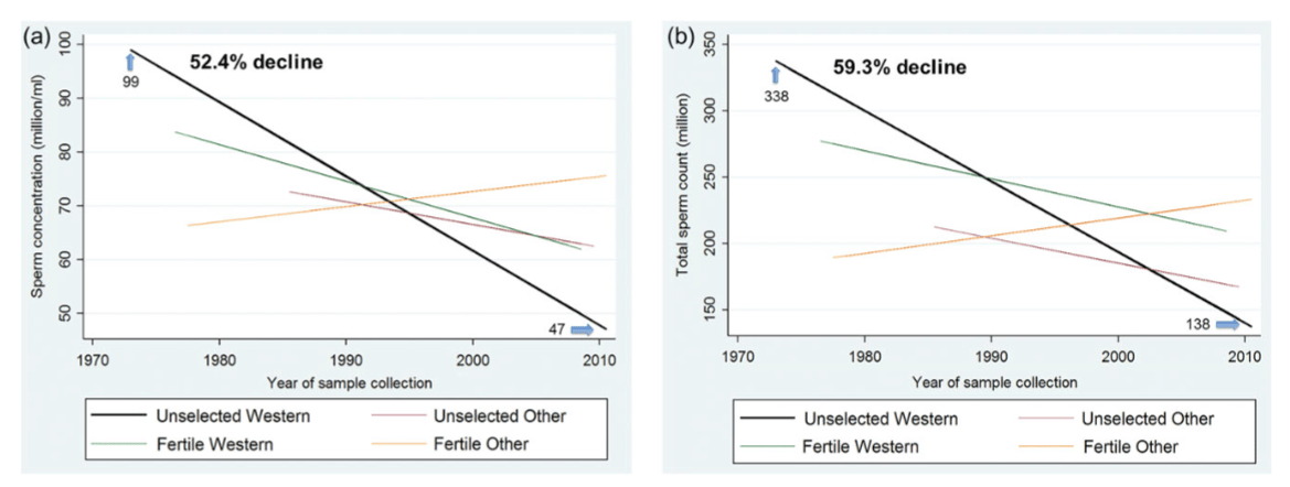 The downward trend found in the large meta-analysis of global sperm counts