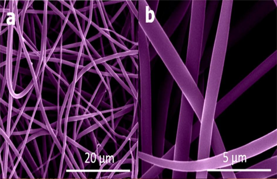 Scanning electron microscope images of (a) SiO2 nanofibers after drying, (b) SiO2 nanofibers under high magnification (Image: Ozkan/UCR)