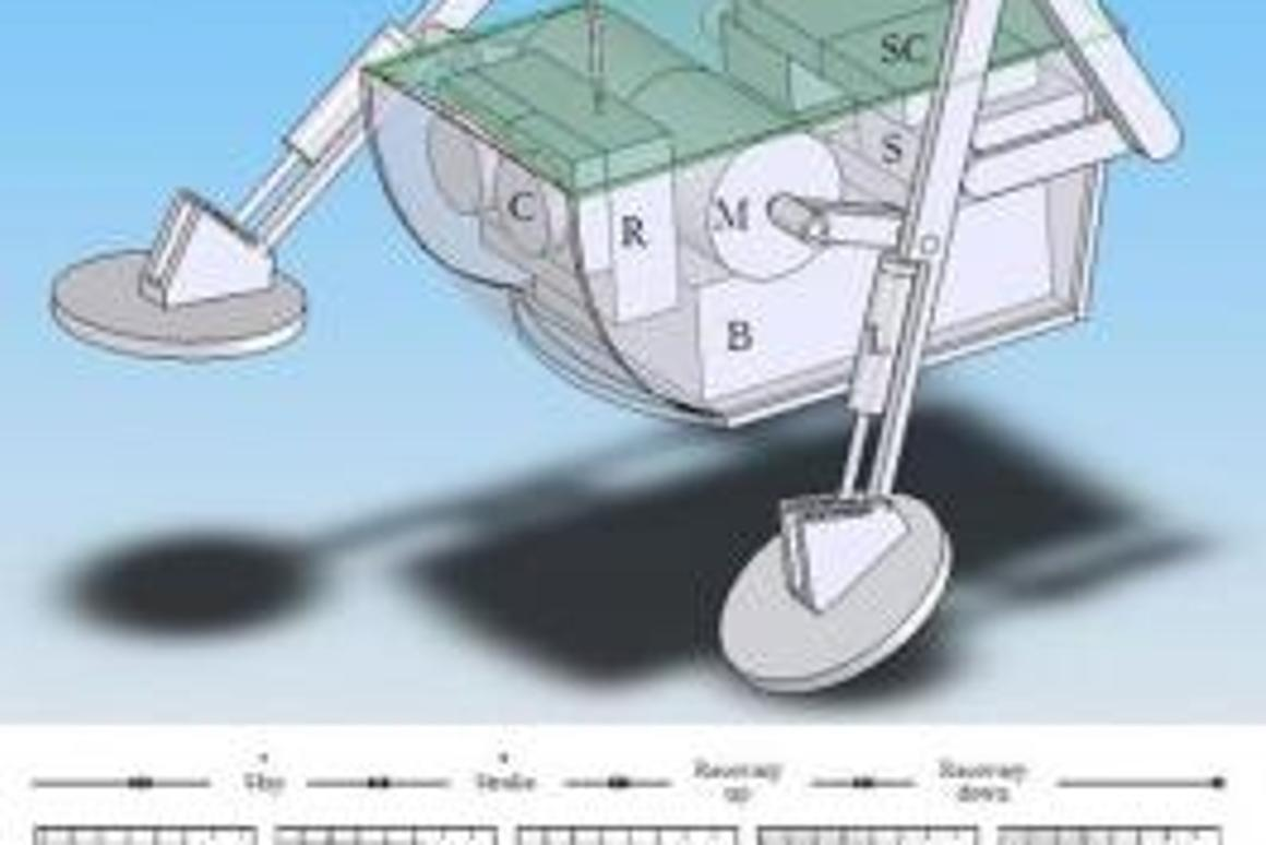 An early CAD design of the Water Runner Robot, also showing the basilisk lizard's water-running leg motions.