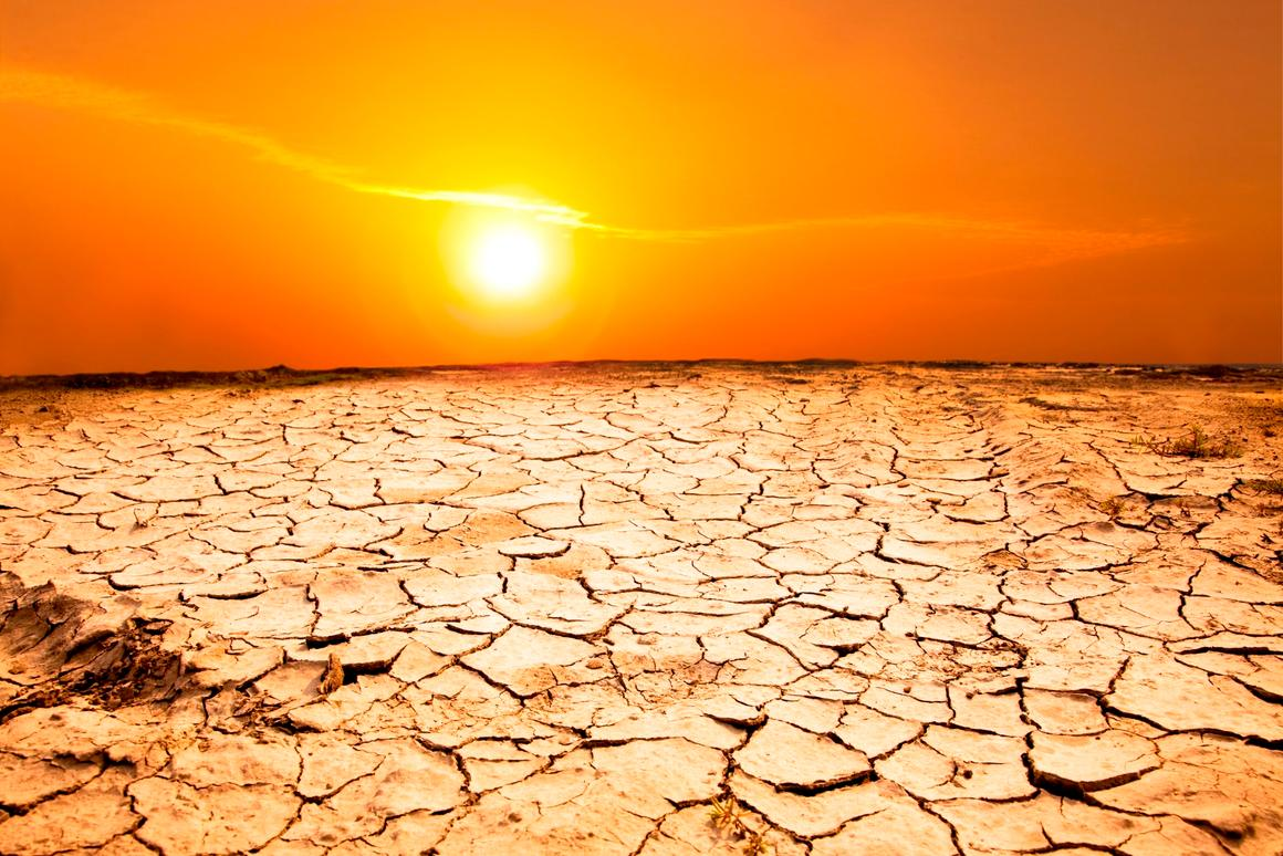 A new NOAA report has found that July 2019 was the hottest month on record, which stretches back to 1880