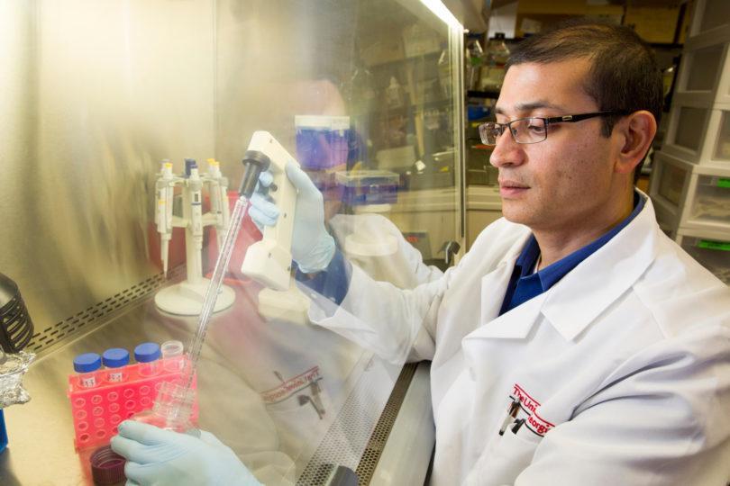 Lohitash Karumbaiah in the lab at the University of Georgia