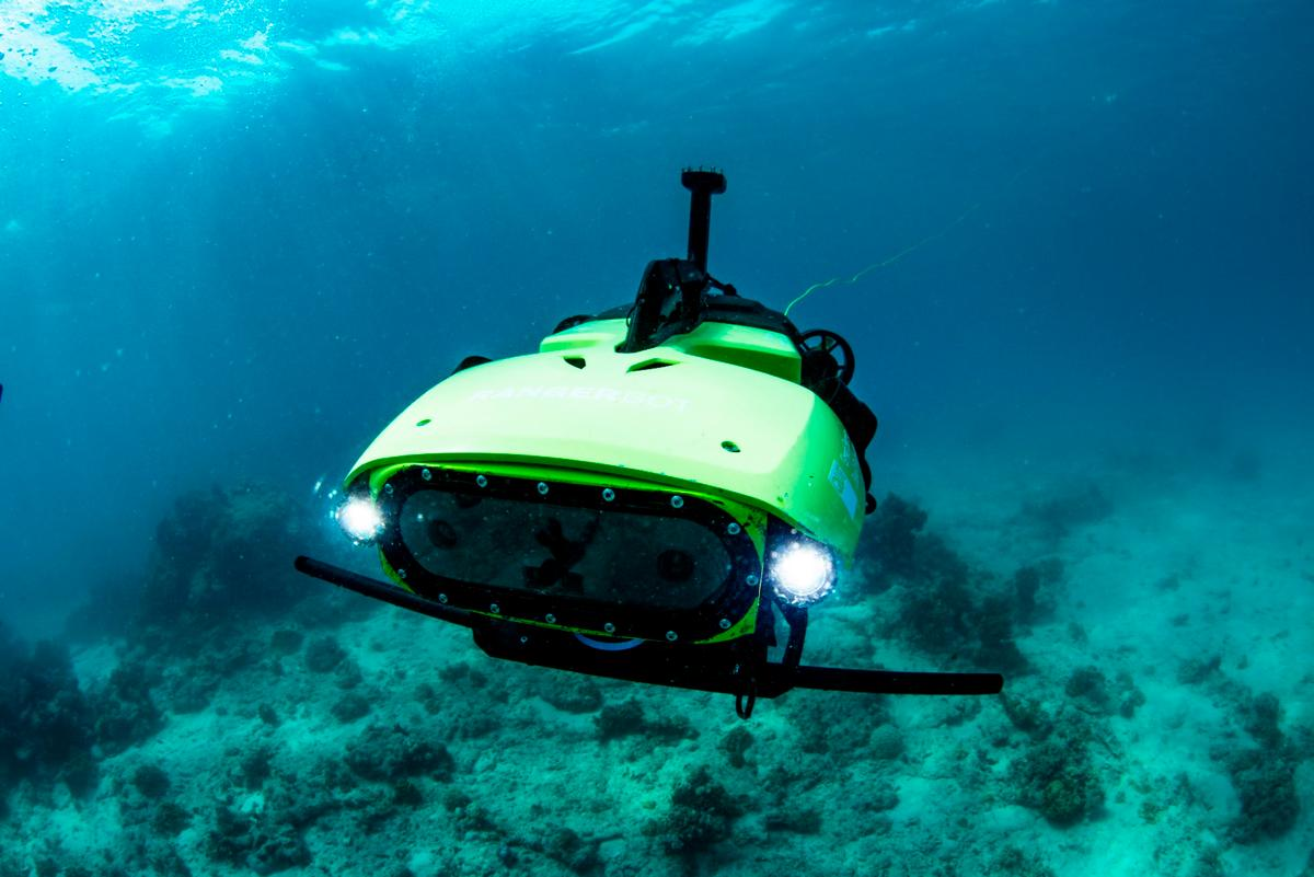 """The """"LarvalBot""""undersea robot has dispersed microscopic baby corals (coral larvae) to help scientists working to repopulate parts of the Great Barrier Reef"""