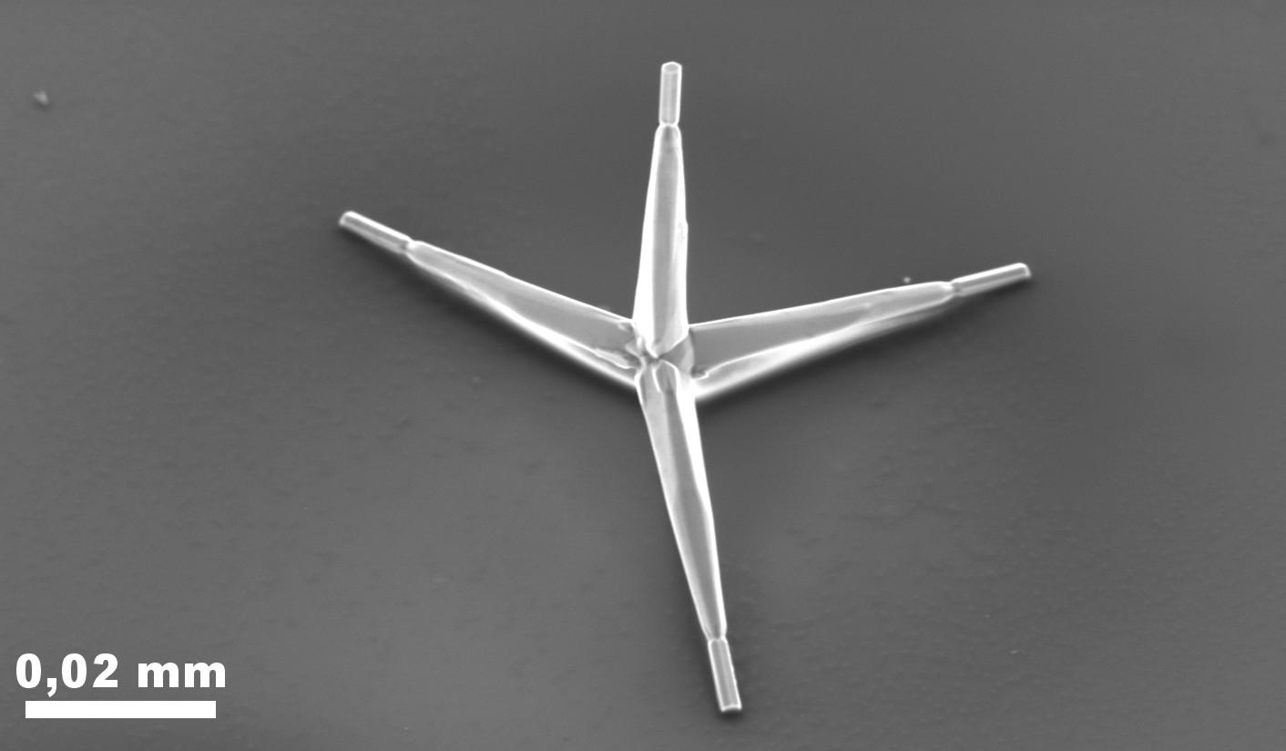 One of the zinc oxide caltrops used as nano-staples (Image: Xin Jin, Copyright CAU)