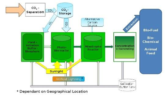A diagram of the See Algae process