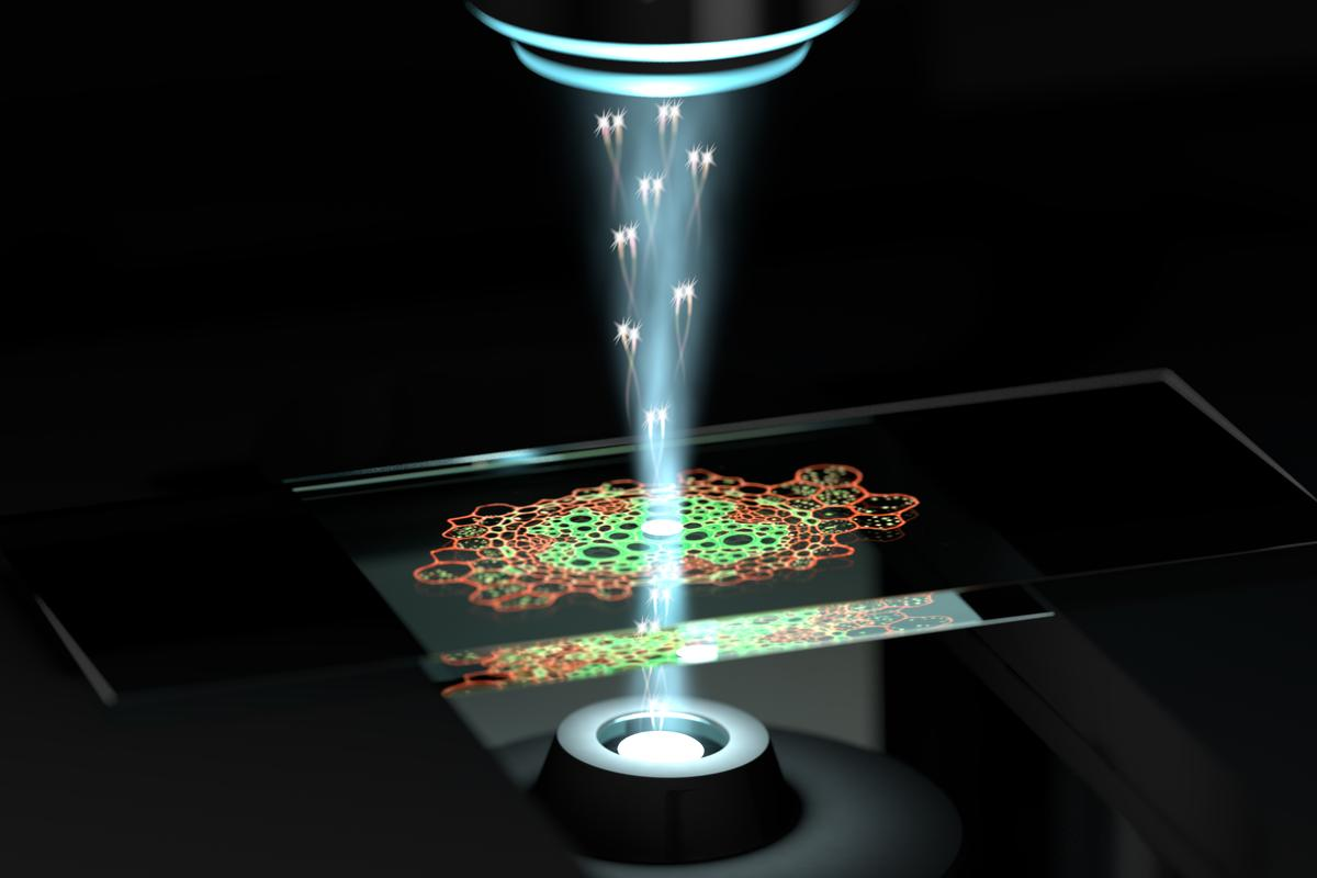 An artist's impression of the quantum microscope, which uses pairs of photons with quantum correlations to image samples at higher resolution with less intense light