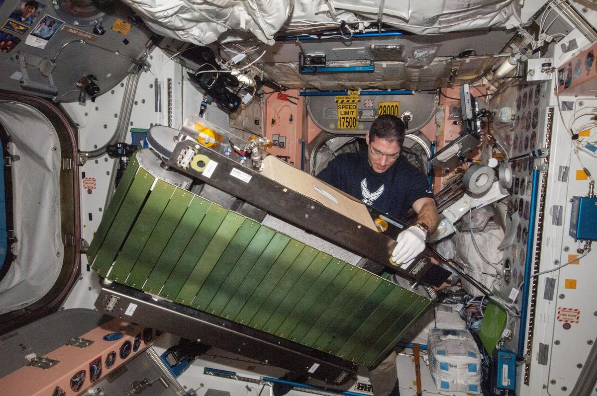 Astronaut Mike Hopkins setting up the COLBERT treadmill (Photo: NASA)