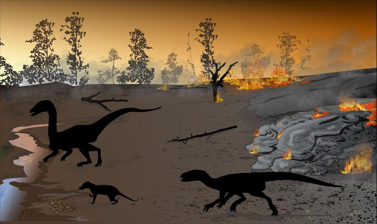 Reconstruction of the environment set alight by a volcanic flow