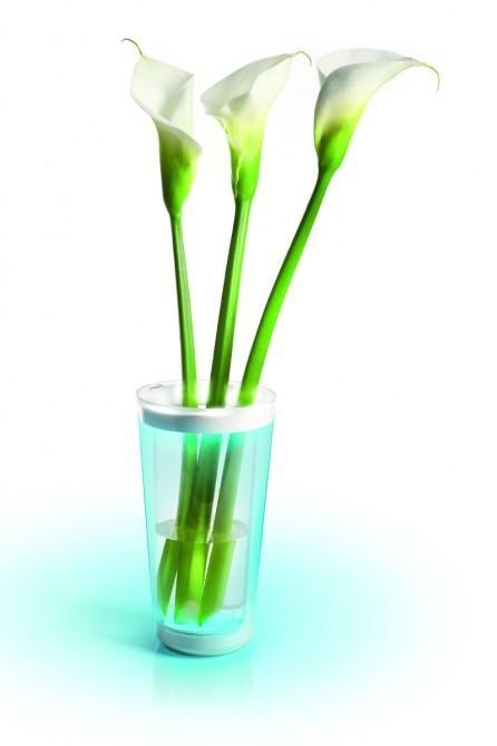 Phillips LED-illuminated vase