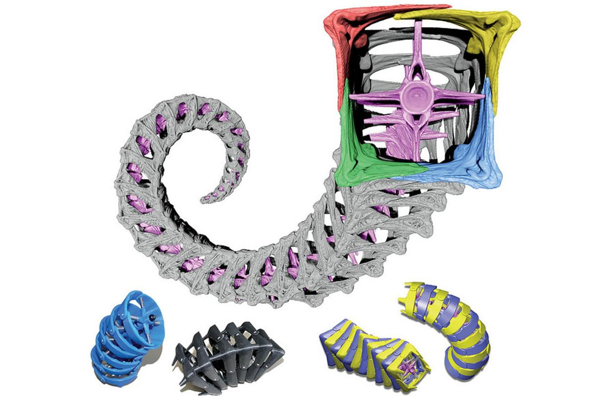 3D models of a seahorse tail tested for possible engineering uses
