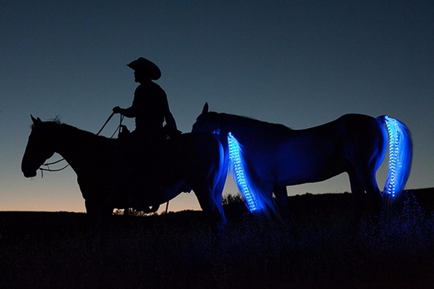 It may look showy, but the Tail Lights System is intended to warn motorists of horses in the vicinity