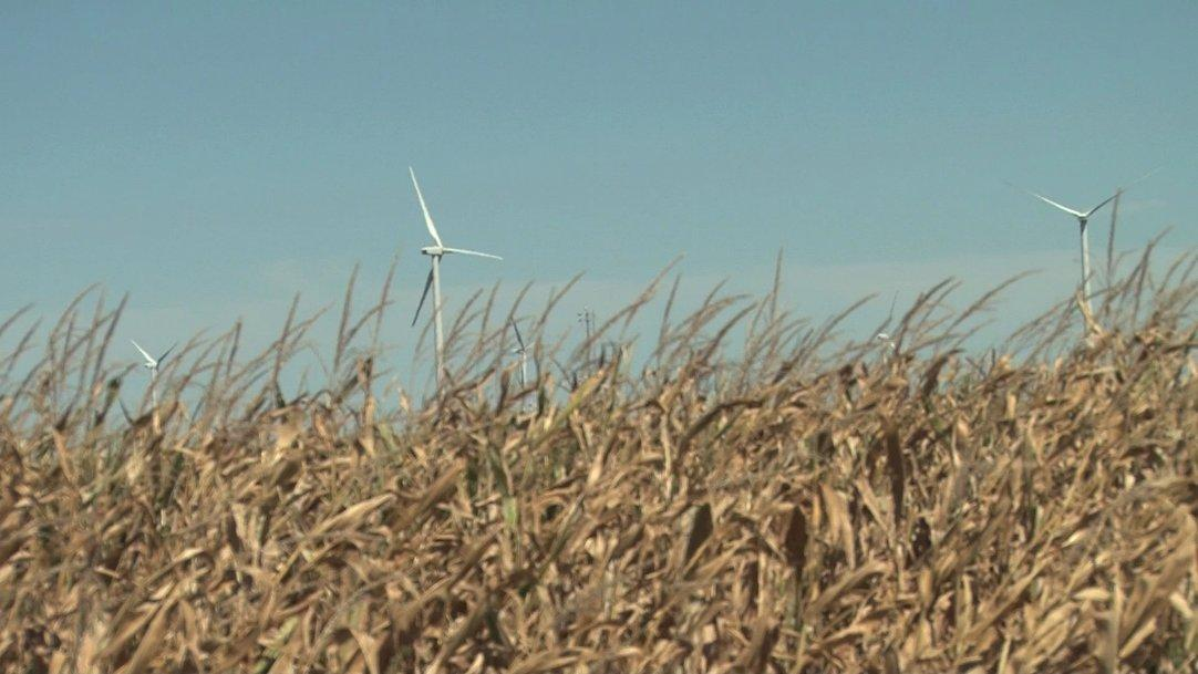 Preliminary results of a study on how wind turbines interact with surrounding farm land have shown that the trubines could benefit crops in subtle but significant ways