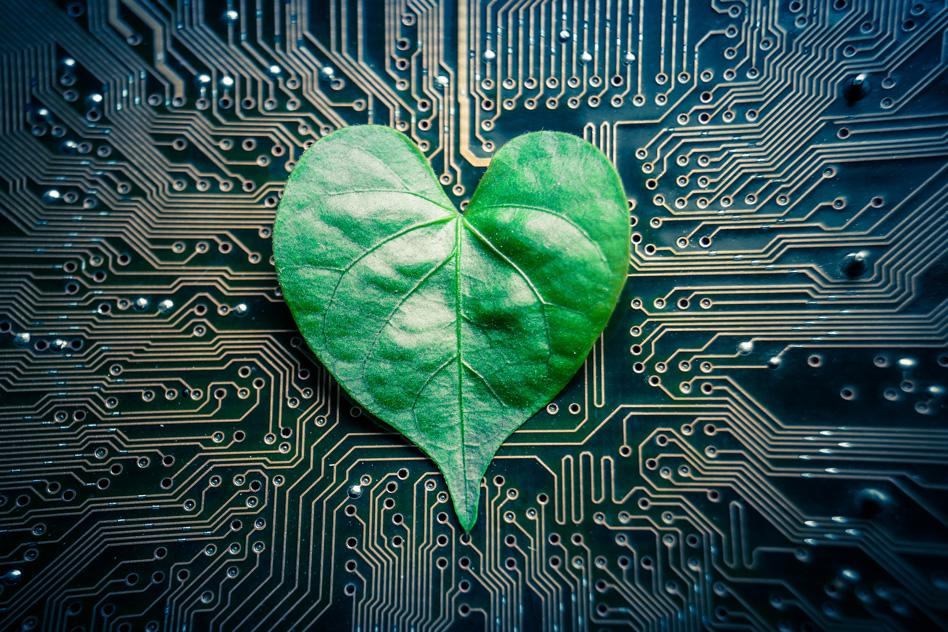 """Nature meets science in new """"tree-on-a-chip"""" design"""