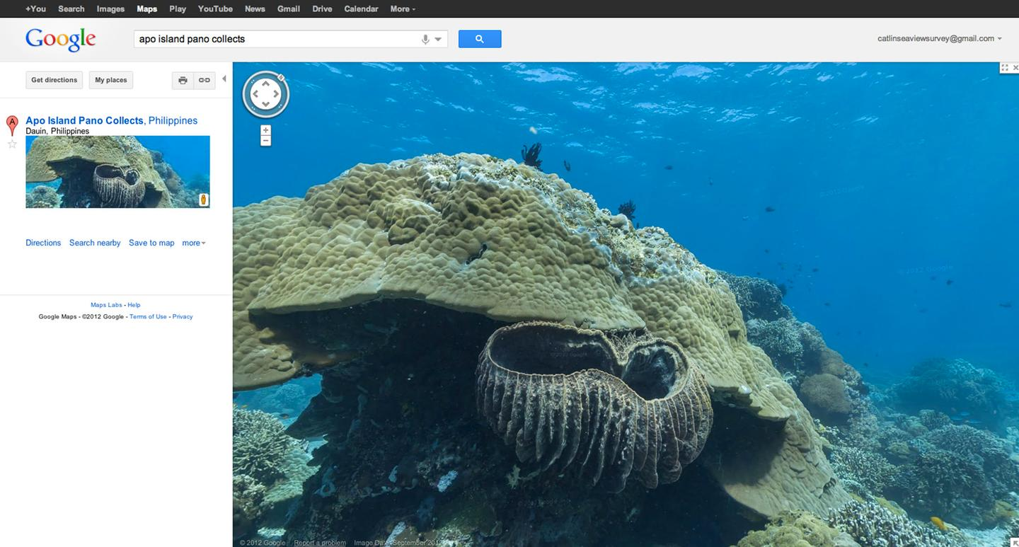 "Google Maps visitors can now virtually ""walk"" along certain reefs through Street View using the same interface for city streets and neighborhoods above sea level"