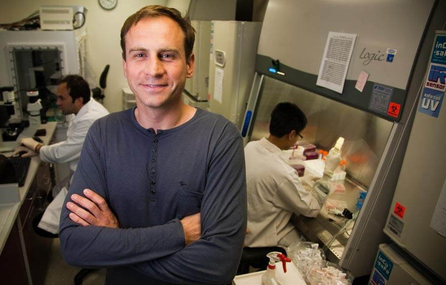 Alexey Terskikh and his research team have made a promising discovery in hair regrowth