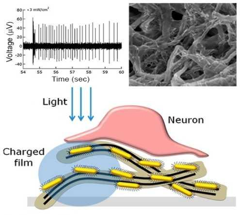 A carbon nanotube-semiconductor nanocrystal film attached to the retina stimulates neurons otherwise unaffected by light; upper-left shows signal response and upper right a microscopic view (Image: American Chemical Society)