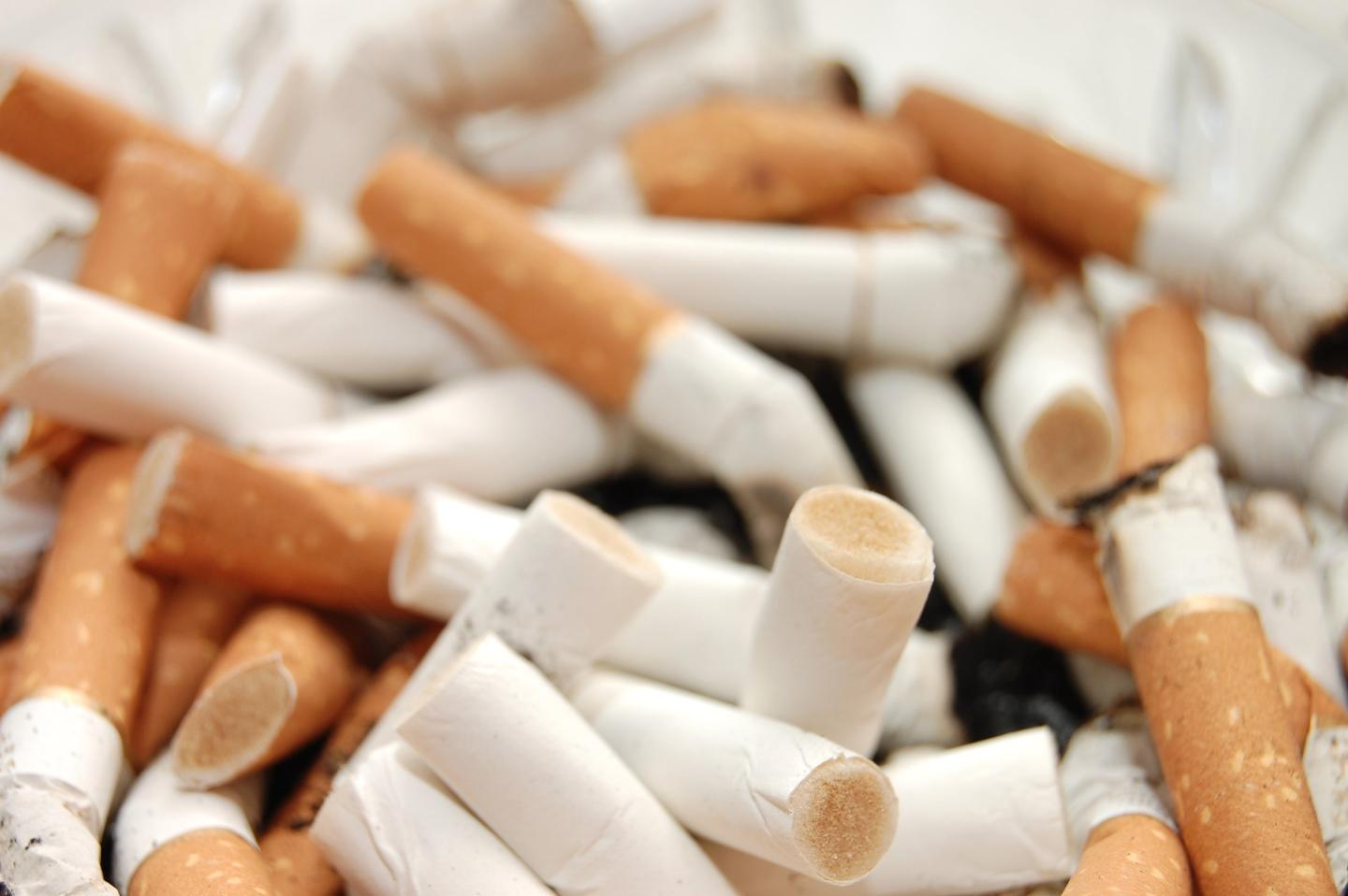 Discarded cigarette butts could soon be locked away inside asphalt roads and paths