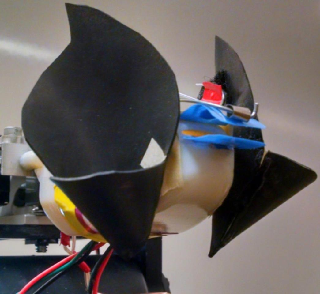 The bat sonar prototype, which is about 2.5 times the size of an actual horseshoe bat