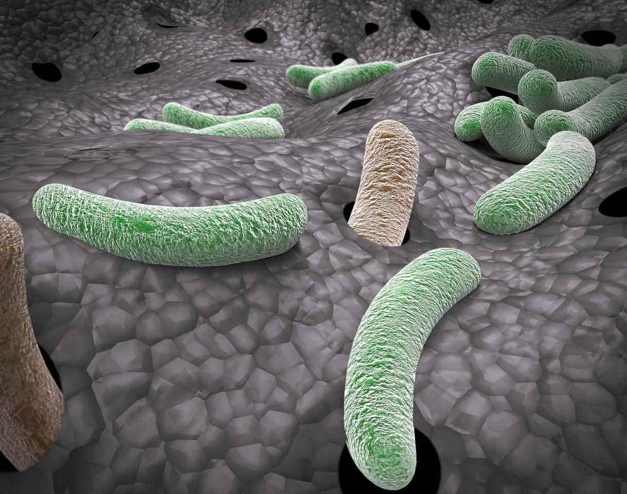 Researchers have found that a rheumatoid arthritis drug can help weaken superbugs, making older antibiotics effective again