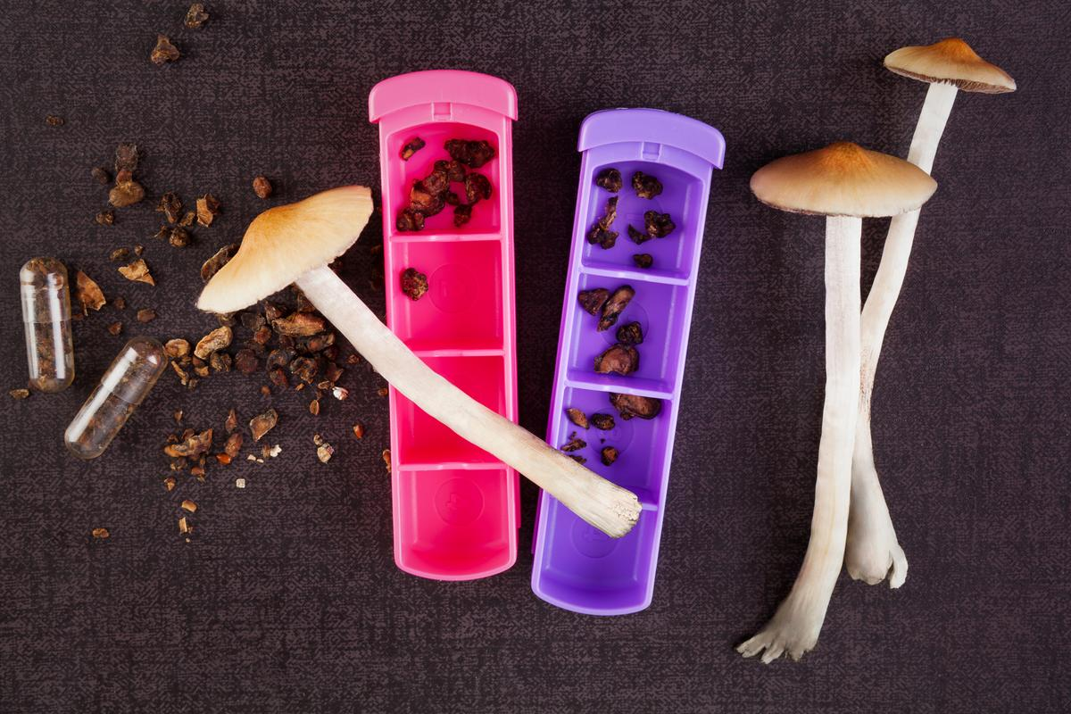 For the first time, a trial has directly compared the efficacy of psychedelic psilocybin psychotherapy for depression against a common antidepressant medication