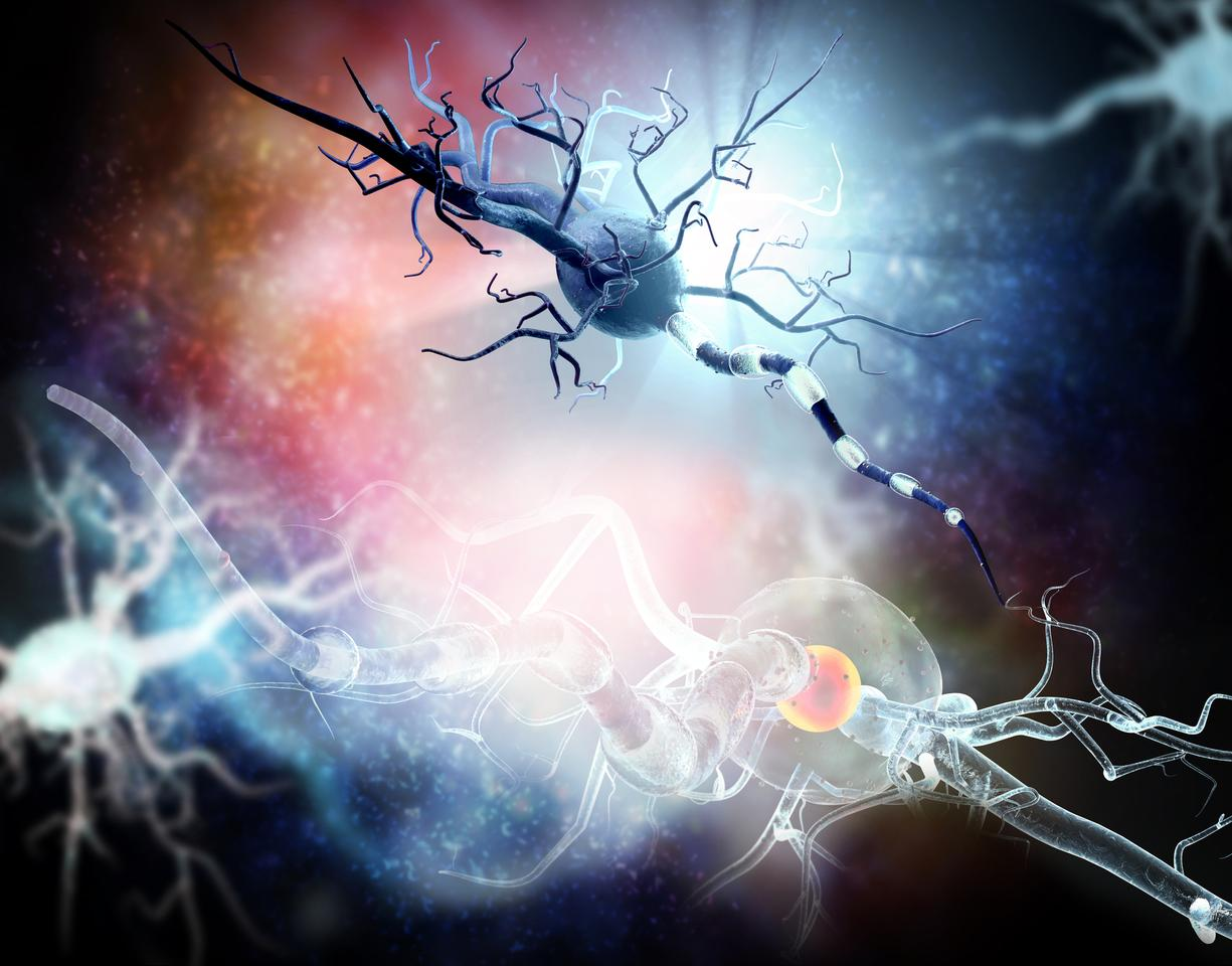 A protein released into the body as a result of neuronal damage could indicate the early stages of neurodegenerative diseases such as Alzheimer's and Huntington's over 20 years before symptoms appear
