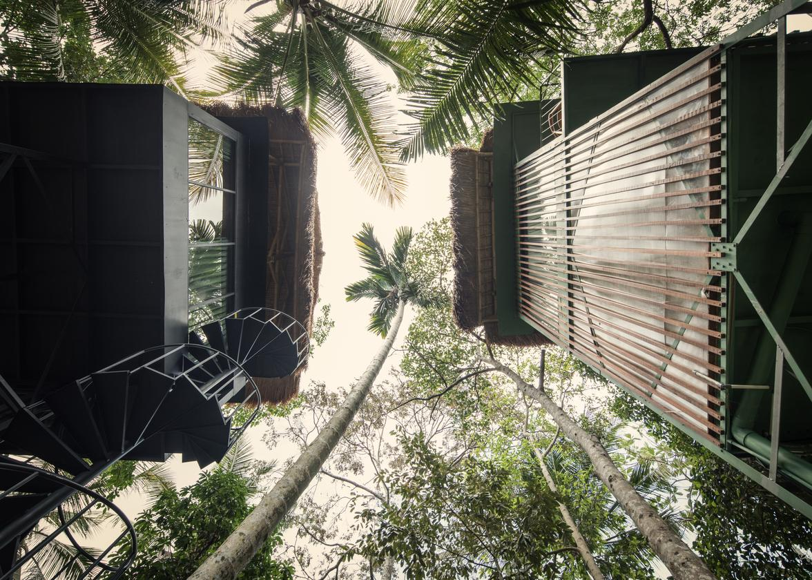 The Lift treehouses are built using steel structures and locally sourced bamboo and timber