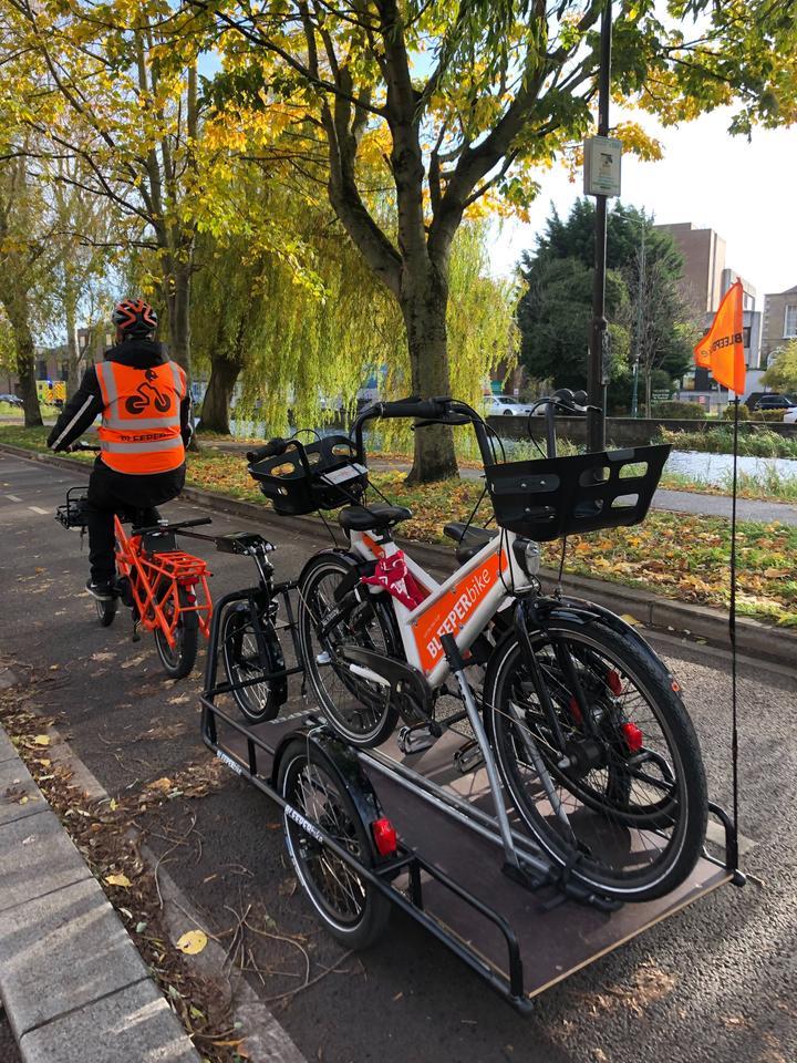A GSD and Carla trailer haul bikes along the river