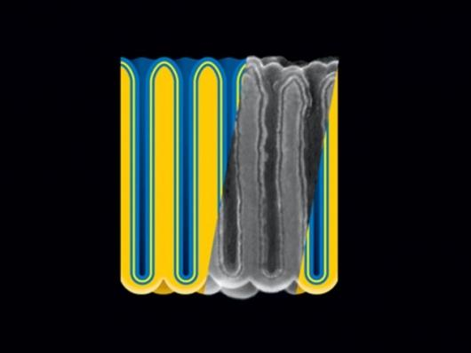 Electrostatic nanocapacitors formed in nanoporous anodic aluminum oxide (darker yellow) film by sequential atomic layer deposition of metal (blue), insulator (yellow), and metal. (Image credit: A. James Clark School of Engineering, U-Md.)