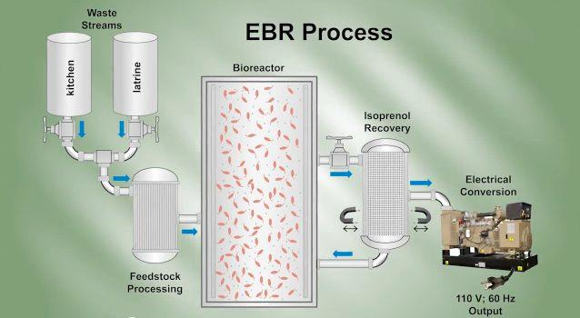 A diagram of the process utilized by the Endurance Bioenergy Reactor