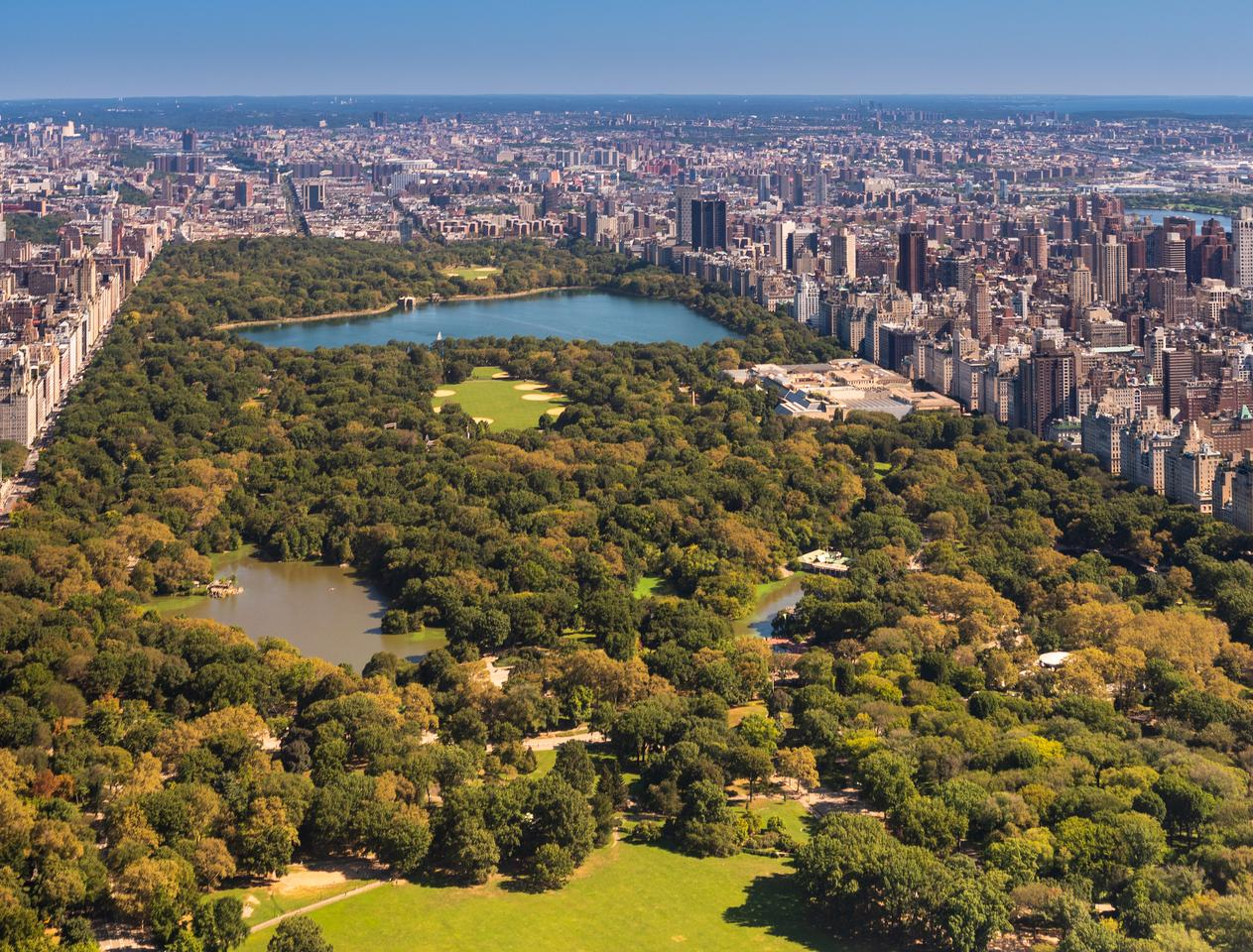 This is the kind of view that US$100 million will buy you in Central Park Tower