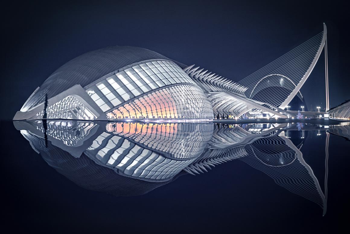 Fish, que fue llevado por Pedro Luis Ajuriaguerra Saiz en un Sony Alpha 9 en España, ha sido declarado ganador del Premio Art of Building Jueces 2020