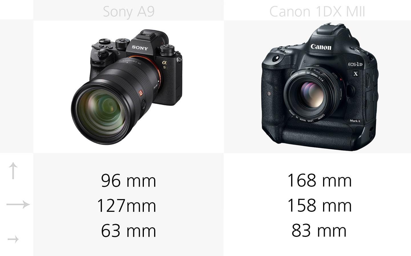 Comparing the dimensions of the Sony A9 and Canon 1DX Mark II