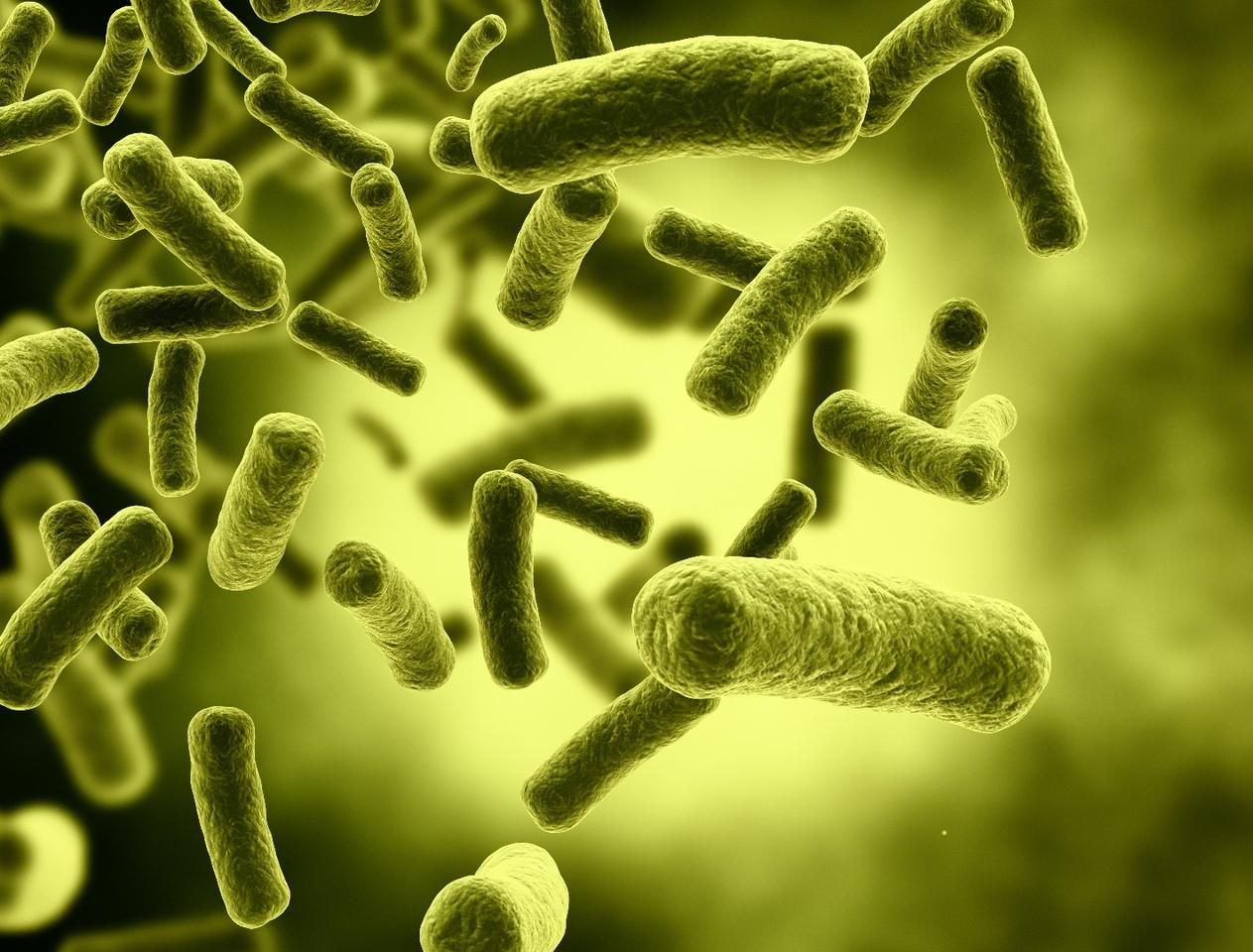 The researchers were able to break up bacterial biofilms, making them much easier to treat