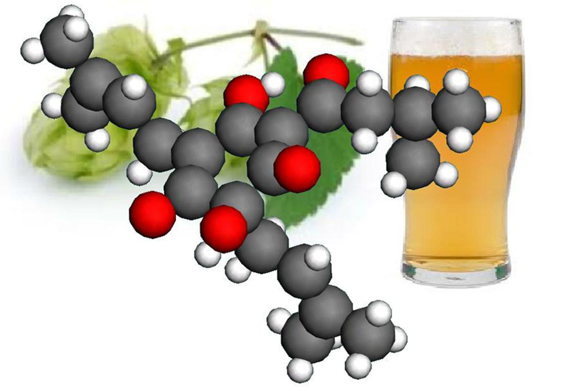 Better understanding the structure of the humulone molecule found in hops could lead to more effective pharmaceuticals